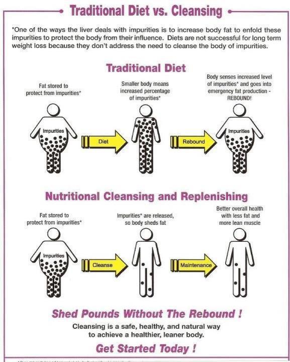 Detox verses diet - why is the Clean 9 so successful? (2/4)