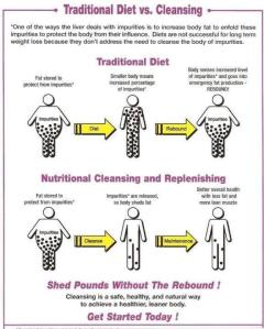 Traditional Diet Vs Cleansing